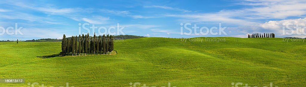 Green Hills and Cypress Trees in Tuscany, Italy stock photo