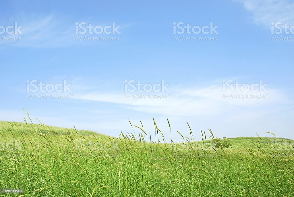 green hills and sky royalty-free stock photo