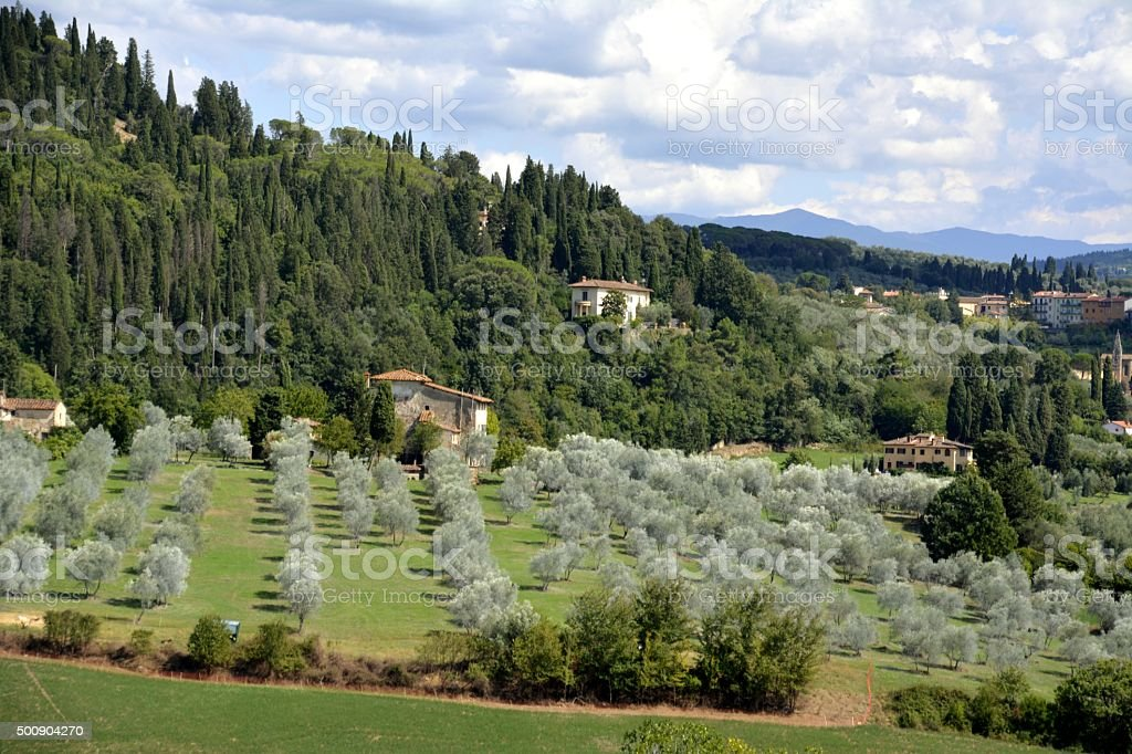 Green hills around Florence, landscape view stock photo