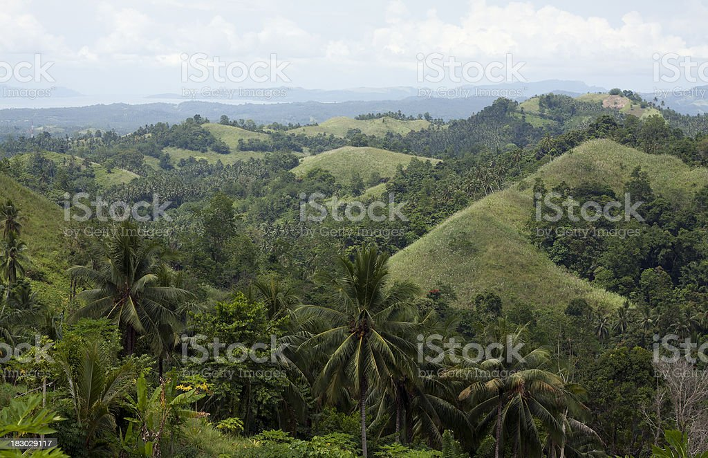 Green hills in Northern Sulawesi stock photo