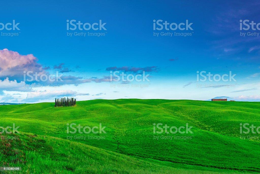 Green hills in Tuscany, Italy stock photo