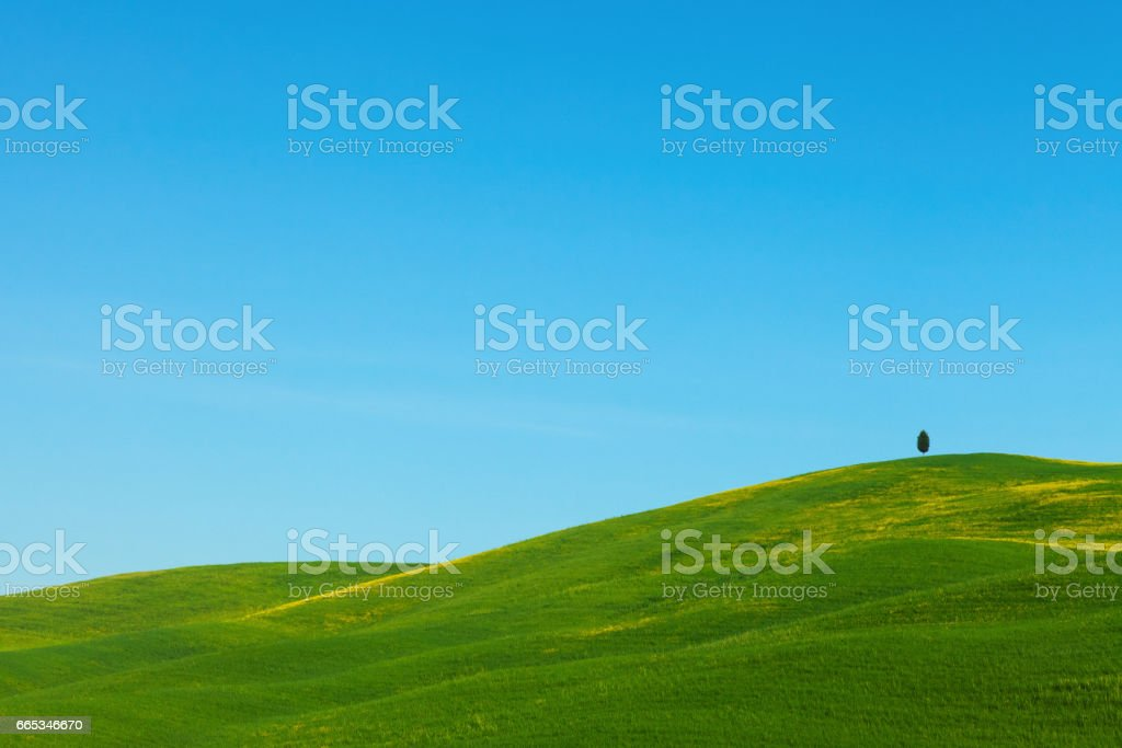 Green hills in Tuscany, Italy stock photo