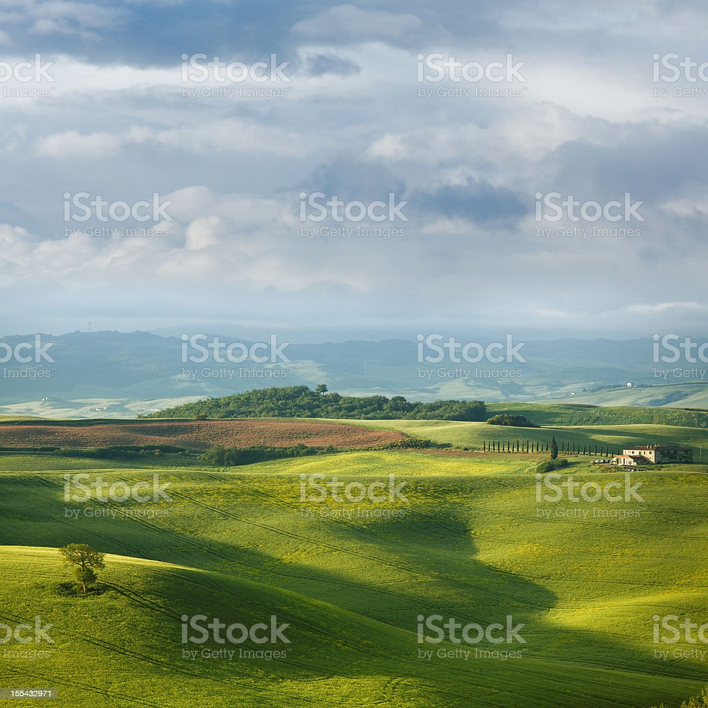 Green hills of Tuscany in the spring stock photo