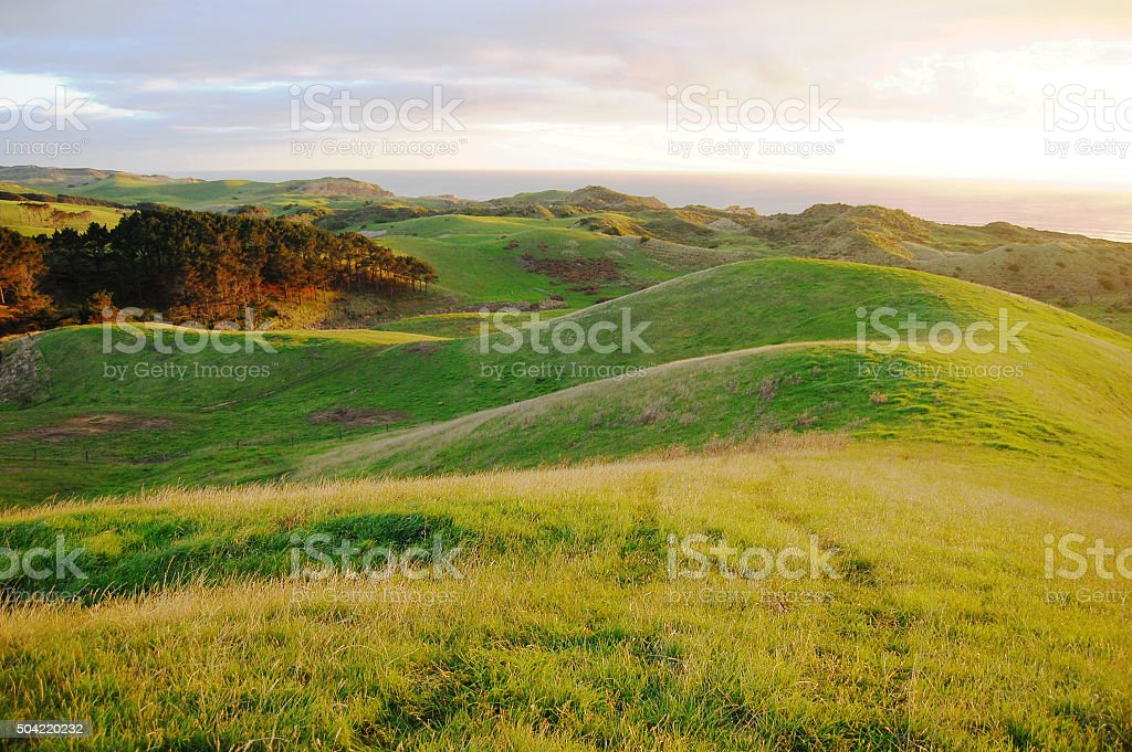 Green hills rural area stock photo