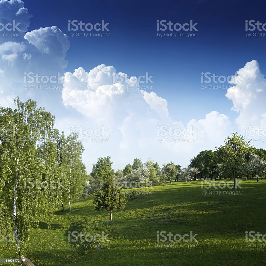 Green hills under clear blue sky royalty-free stock photo