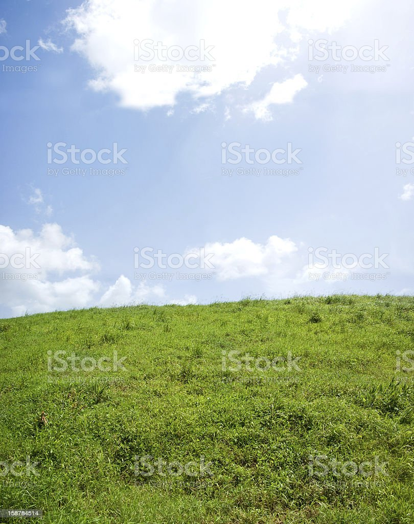 green hilly field and blue sky stock photo