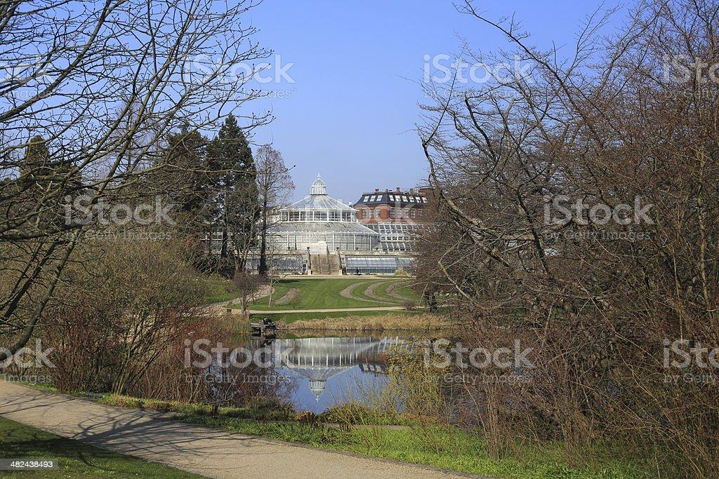 Green house in Botanic Garden, Copenhagen royalty-free stock photo