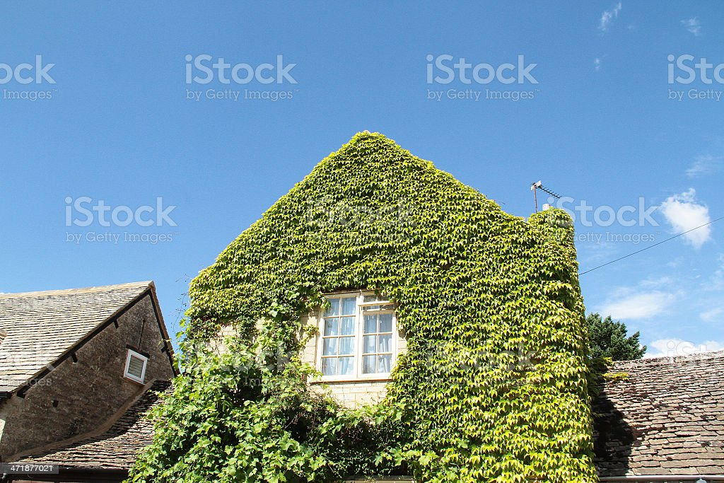 Casa verde a Lechlade, Gloucestershire foto stock royalty-free