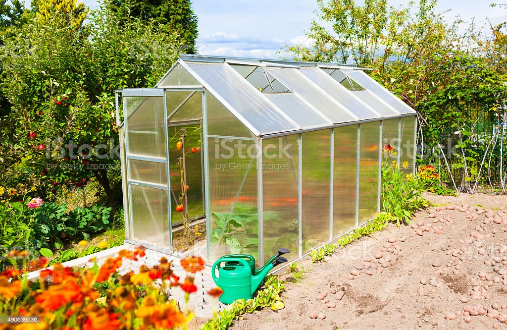 Green house in the garden stock photo