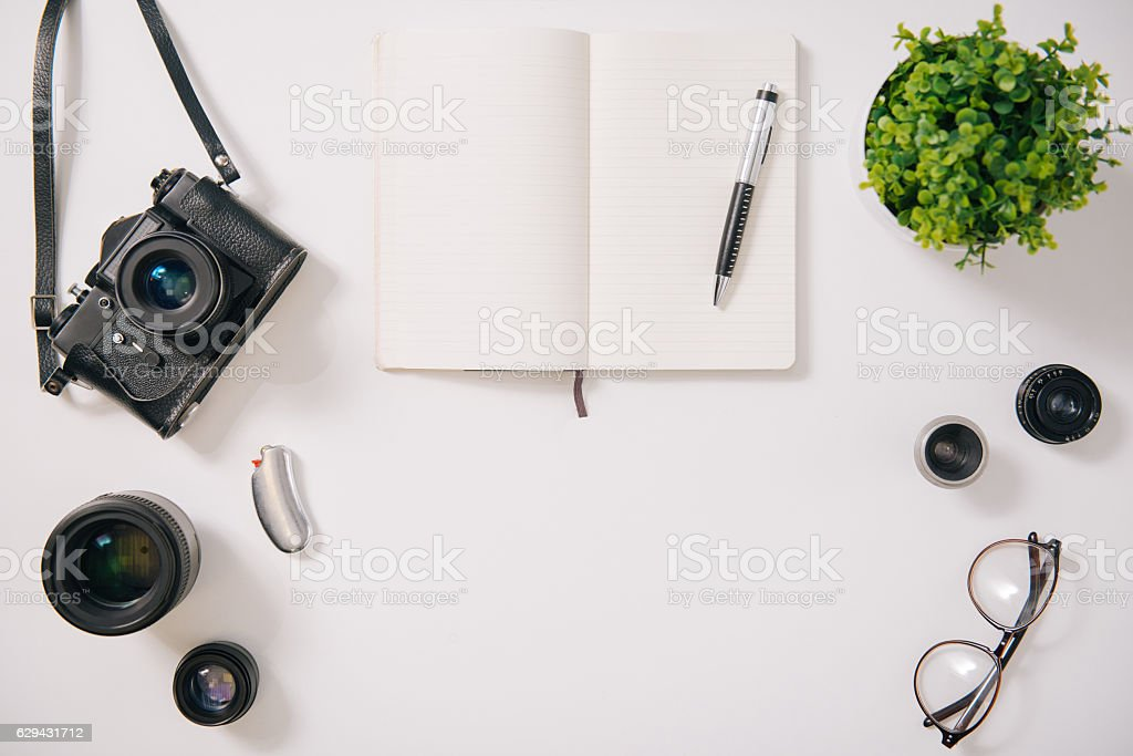 Green house plant standing near the notebook stock photo