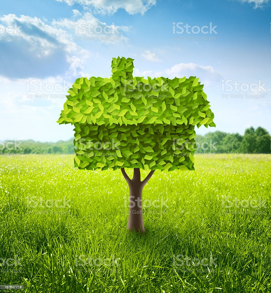 Green house tree growing on a meadow stock photo