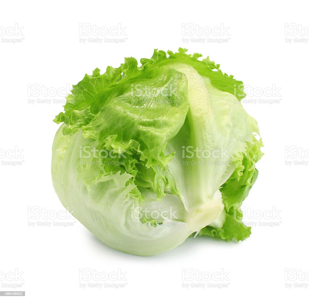 Green Iceberg lettuce on White Background stock photo
