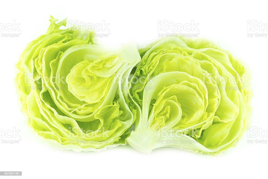 Green Iceberg lettuce stock photo