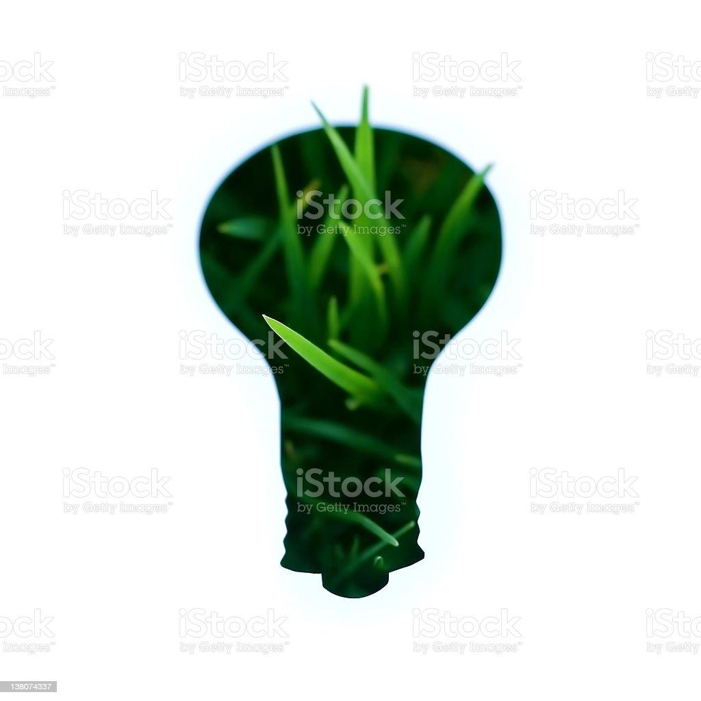 Green idea royalty-free stock photo