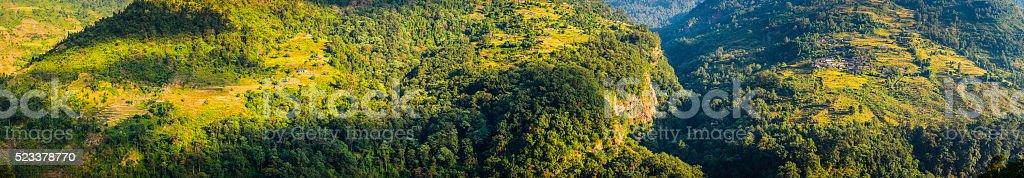 Green jungle terraced fields remote mountain farms Annapurna Himalaya Nepal stock photo
