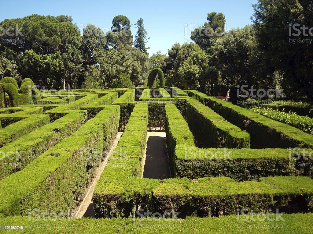 green  Labirinth stock photo