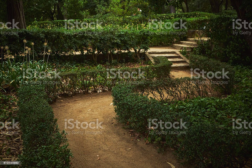 Green labyrinth in a park stock photo