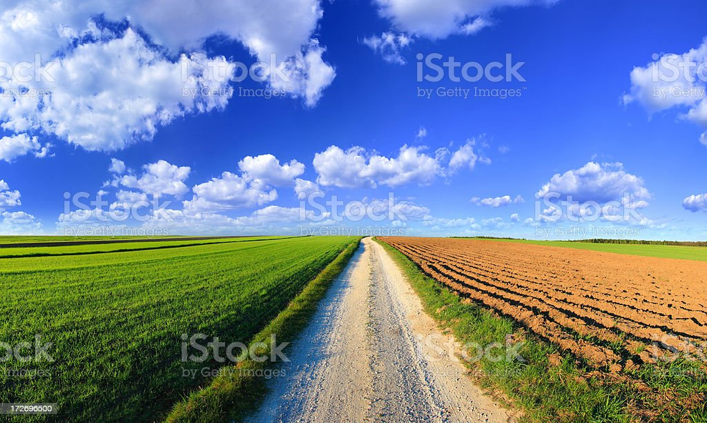 Green Landscape and Road royalty-free stock photo