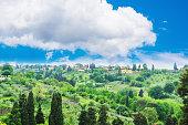 green landscape in Florence