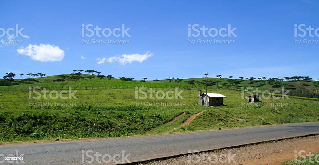 Green landscape in Kenya, Africa stock photo
