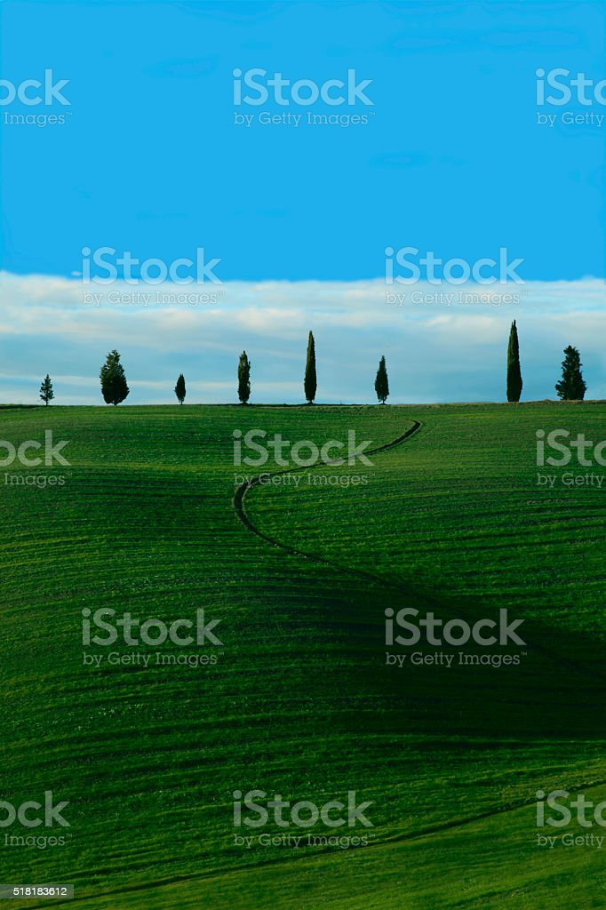 Green landscape in Tuscany (Italy) stock photo