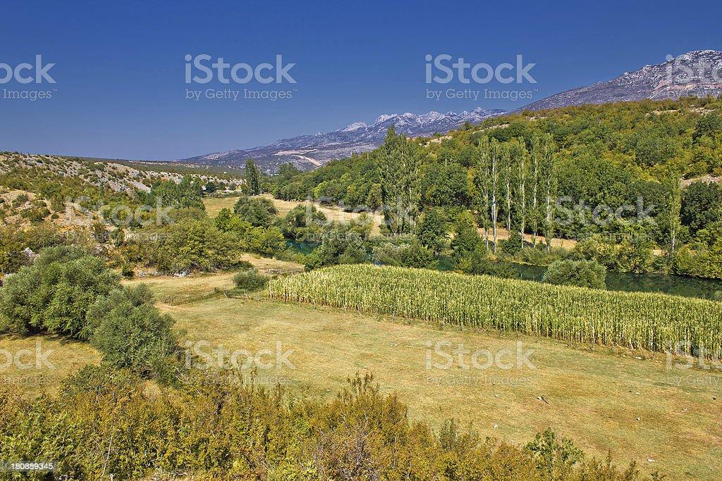 Green landscape of Zrmanja river valley stock photo