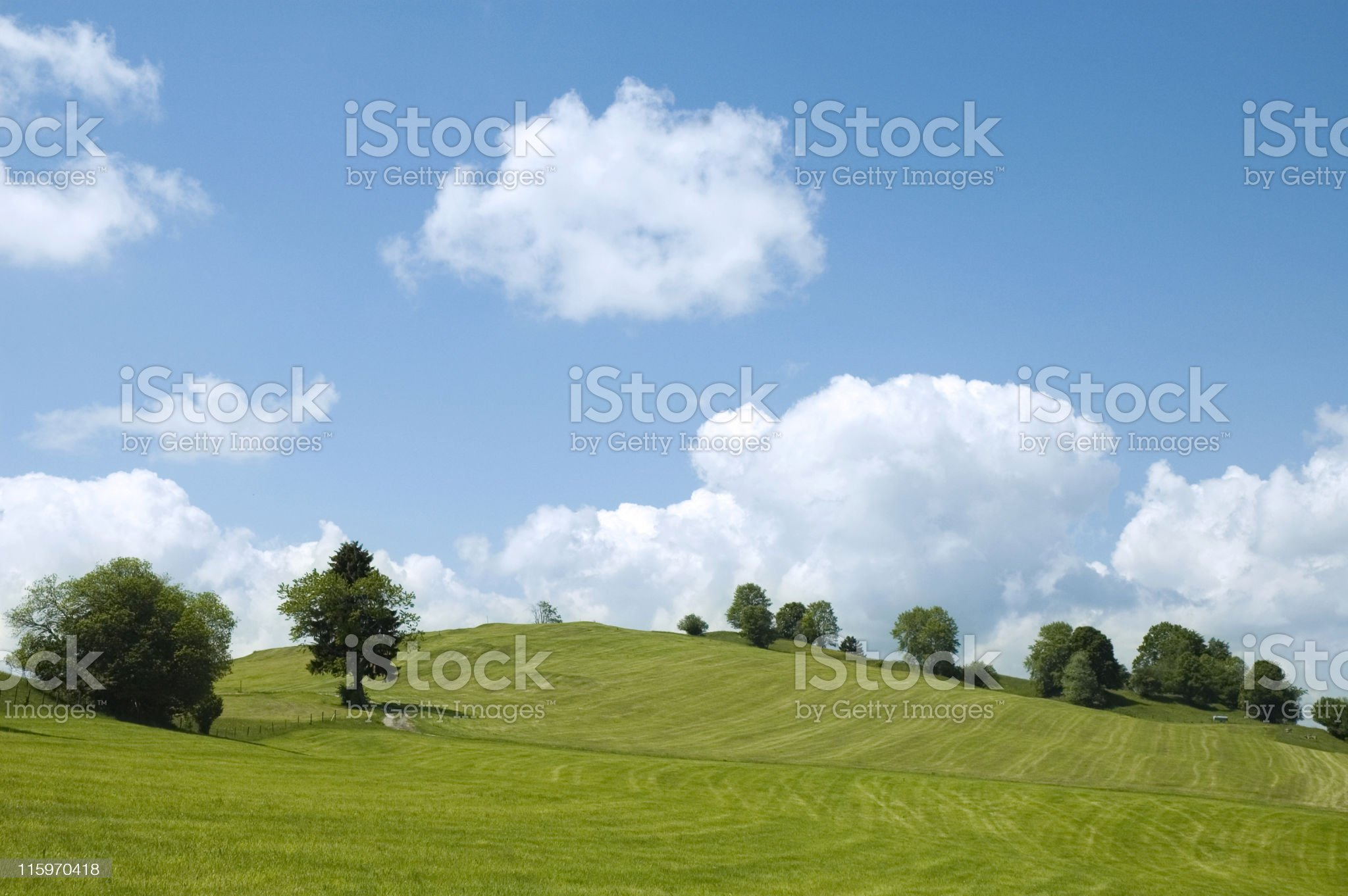 Green Landscape royalty-free stock photo