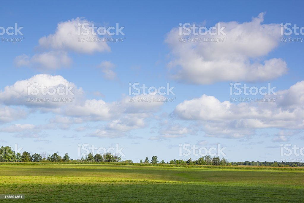 Green Landscape Spotted With Cloud Shadows and Sunshine royalty-free stock photo