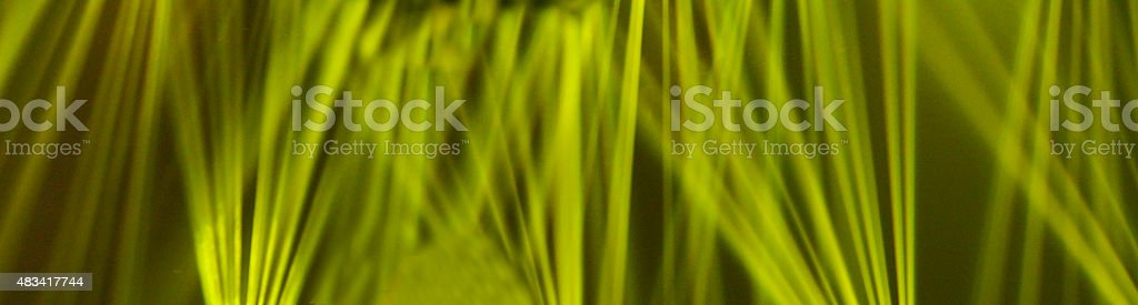 Green Laser Light stock photo