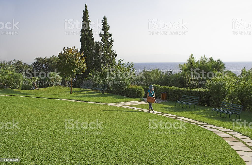 Green lawn stock photo