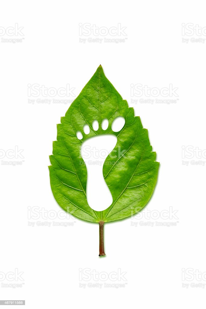 Green leaf carved in the shape of a foot stock photo