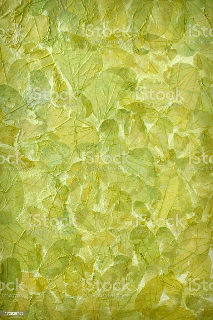 Green leaf craft paper background. royalty-free stock photo