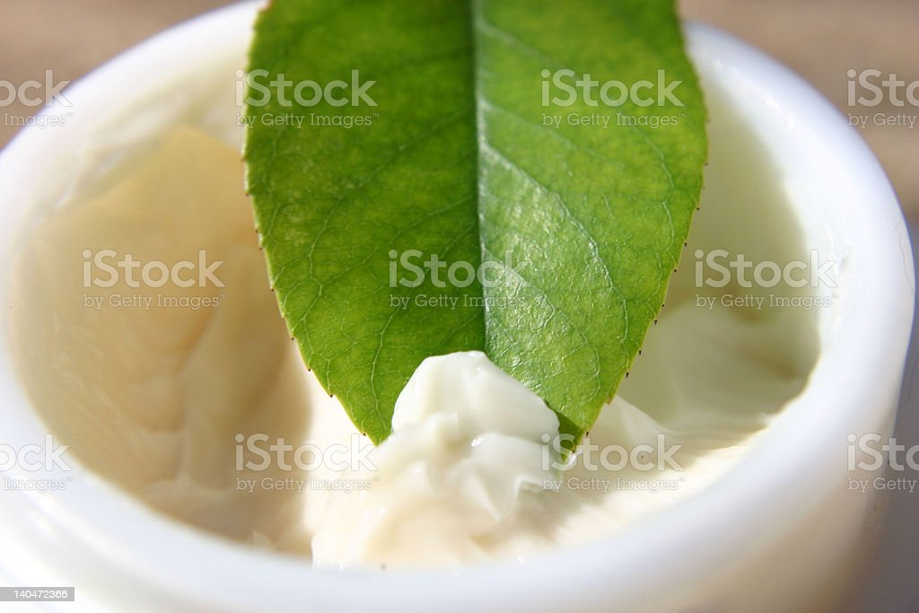 Green leaf dipped in natural cream remedy royalty-free stock photo