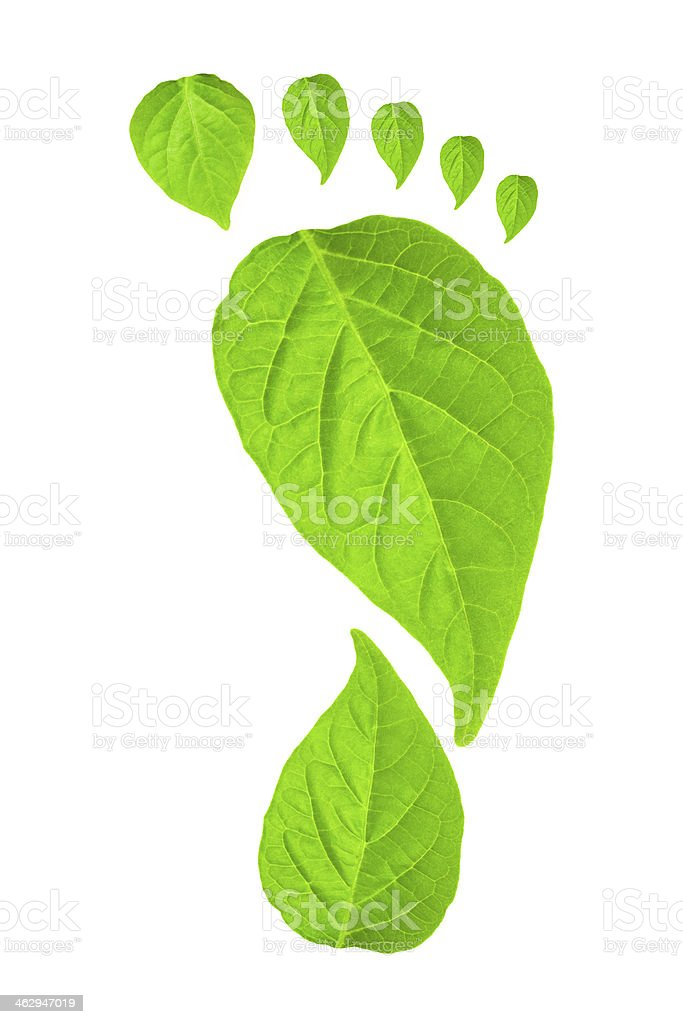 Green leaf footprint concept stock photo