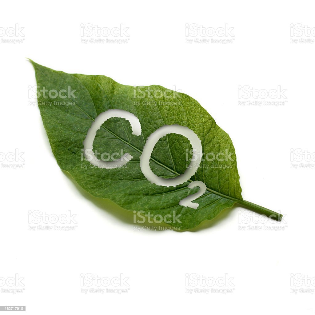 A green leaf with co2 written on it stock photo