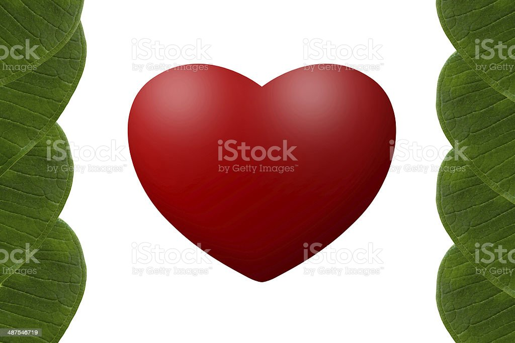 Green leaves heart-shaped frame in the middle. royalty-free stock photo
