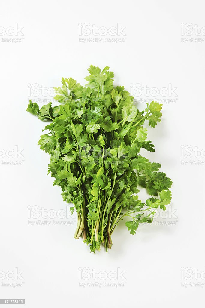 Green leaves of parsley royalty-free stock photo