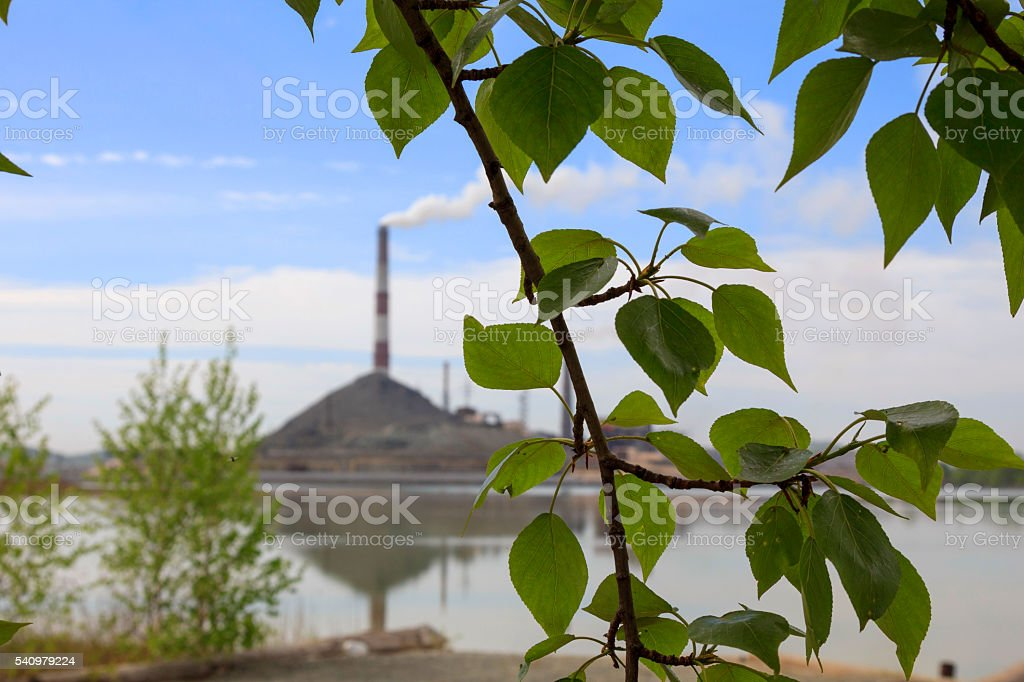 Green leaves on a background of smoking chimneys of the plant stock photo