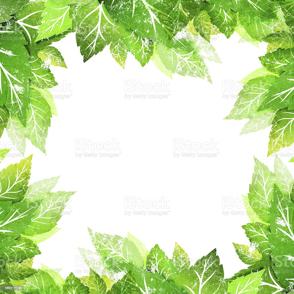 green leaves on white royalty-free stock photo