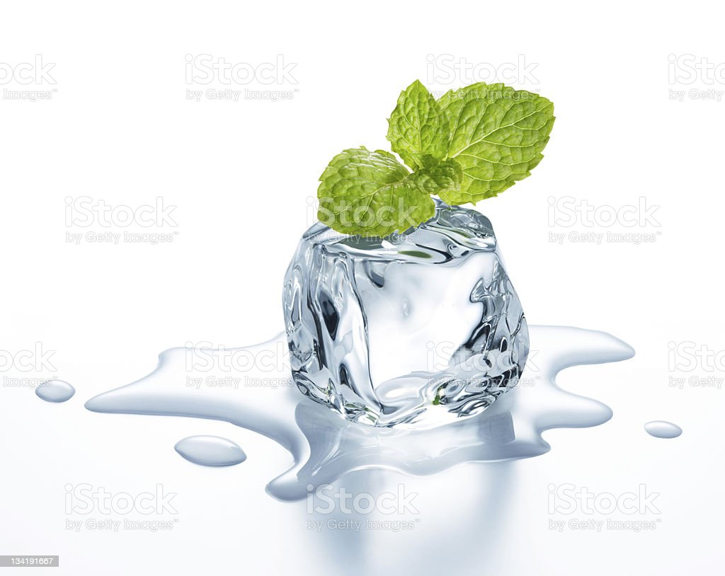 Green leaves over a melting ice cube  royalty-free stock photo