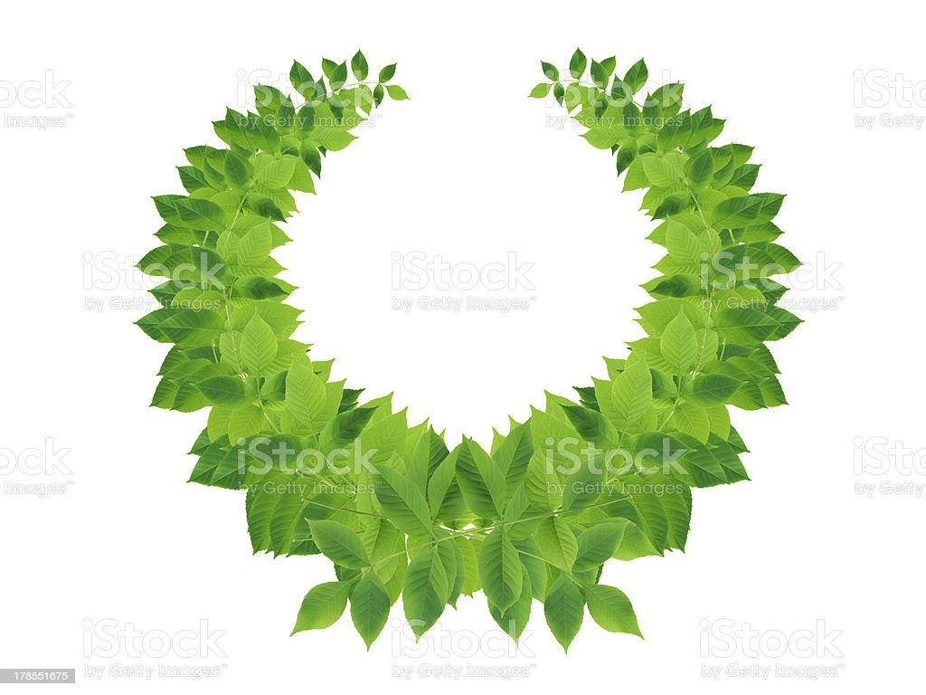 Green Leaves Wreath royalty-free stock photo