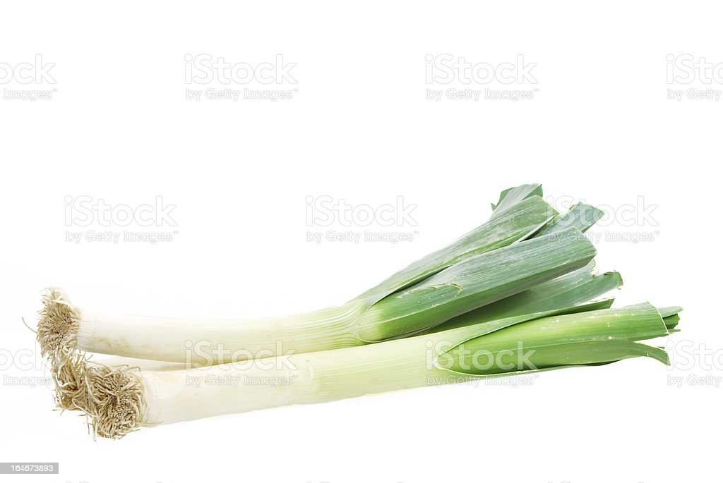 Green Leek royalty-free stock photo