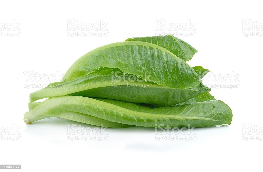 Zielonej sałaty na białym tle zbiór zdjęć royalty-free