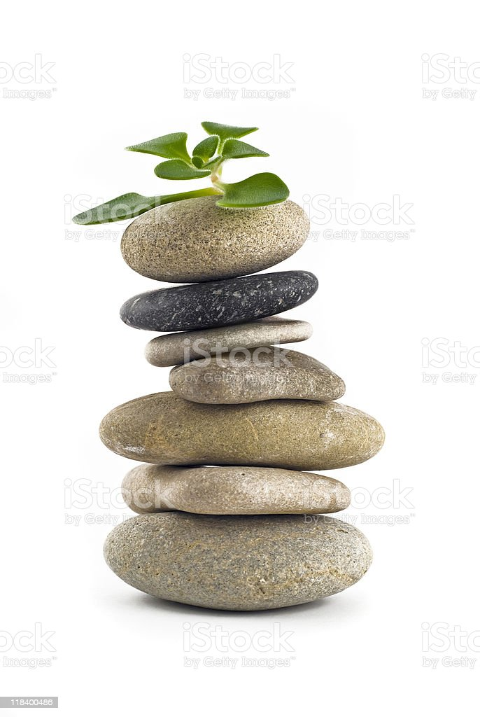 Green Life - balanced stone tower with plant stock photo