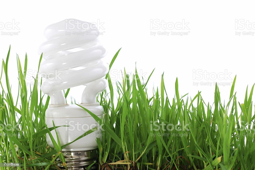 Green light bulb royalty-free stock photo