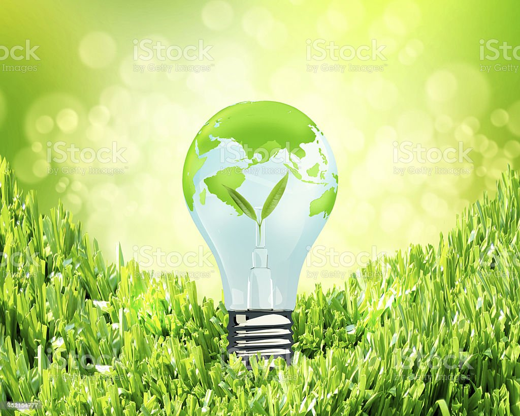 green litgh bulb stock photo