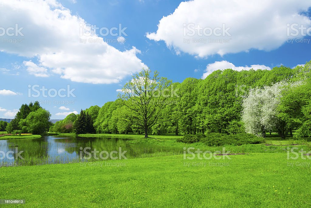 Green lush spring landscape with sky reflected in a pond royalty-free stock photo