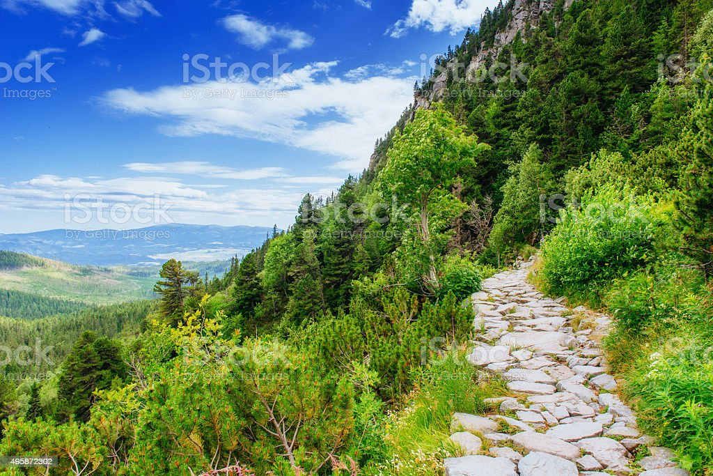 Green meadow and blue sky with clouds over the mountains stock photo