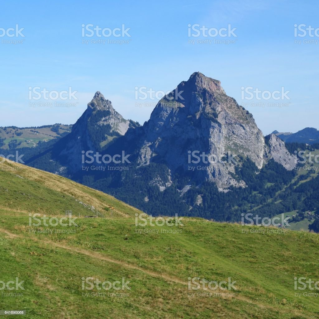 Green meadow and mount Mythen, Swiss Alps stock photo