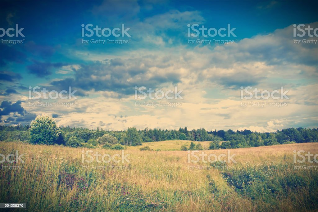 Green meadow under dramatic sky landscape stock photo